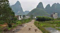 Horkýže Slíže dobyli čínský venkov