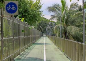 V Bangkoku na kole?