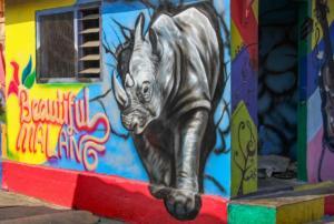 Pozor nosorožec