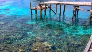 Korálový útes Yenbuba