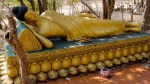 Ležící Buddha v lesíku